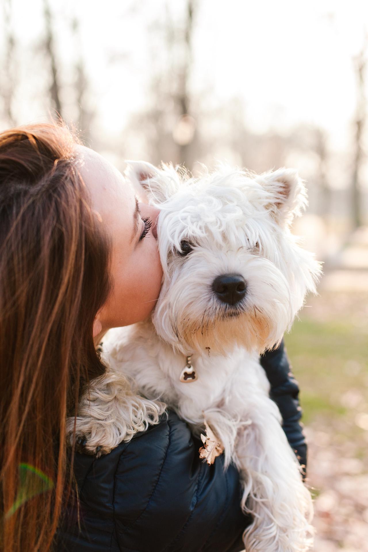 Girl kissing white dog