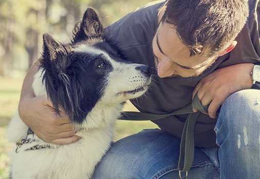 Dog and man together
