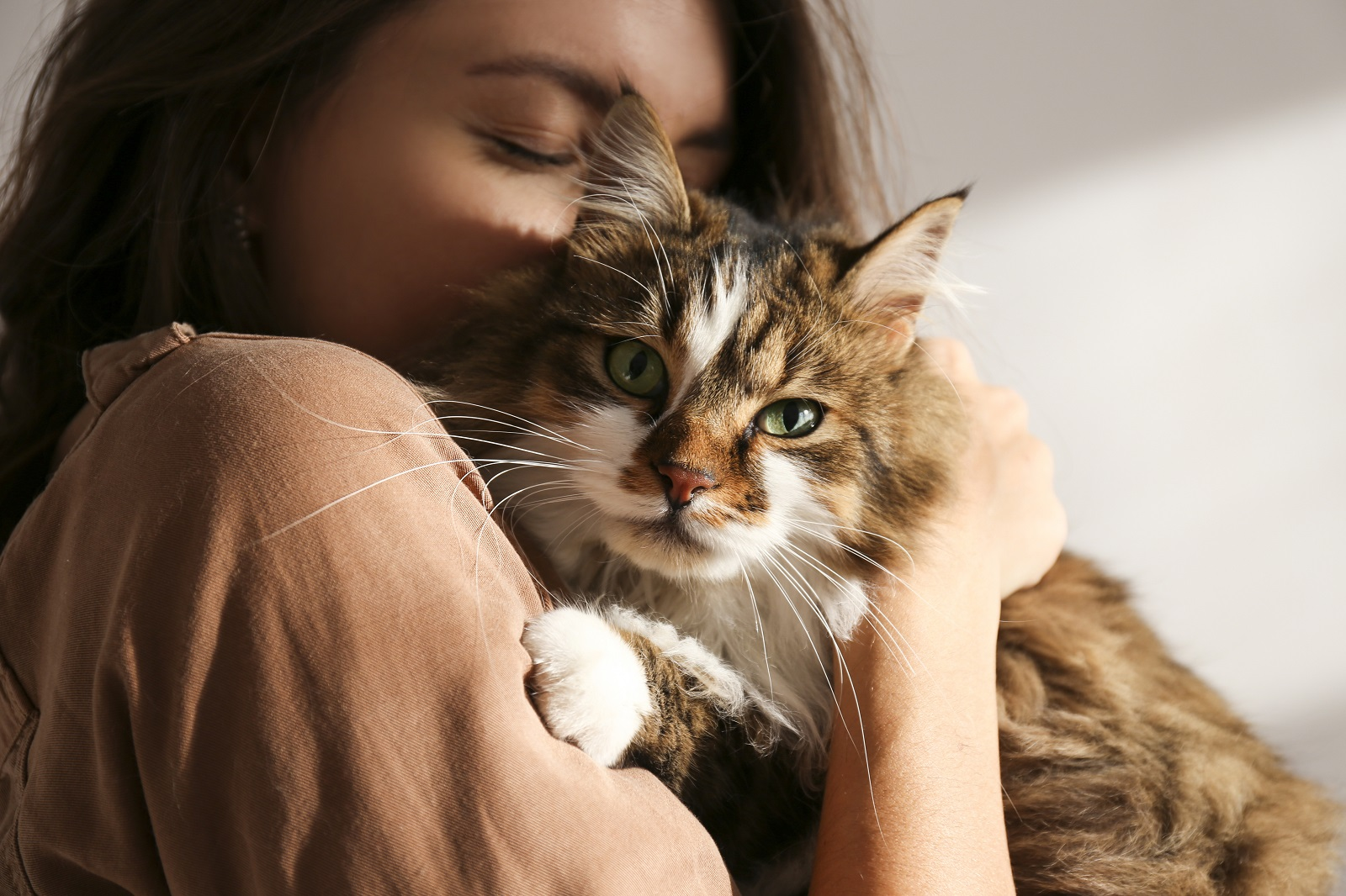 When is it Time? Understanding Your Pet's Pain as it Relates to Quality of Life